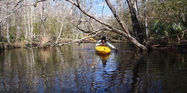 Kayaker navigating the New River in Bluffton, South Carolina