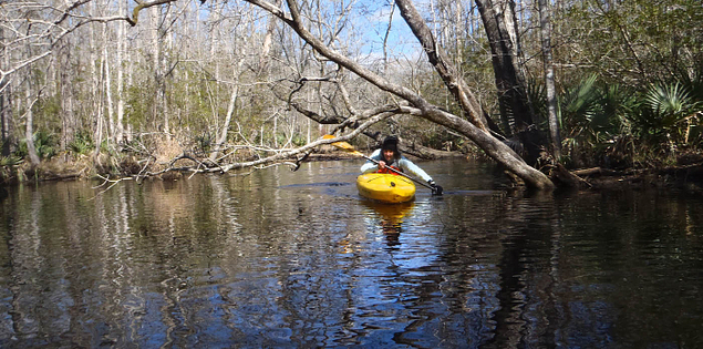 Kayaker navigating the New River in Bluffton, South Carolina