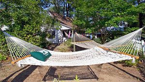 The Original Hammock Shop