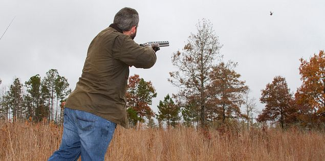 Using a shotgun in Waterloo to hunt South Carolina quail