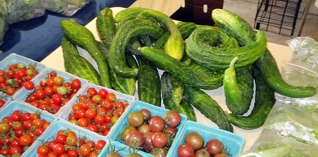English cucumbers and cherry tomatoes grown by City Roots in Columbia, South Carolina