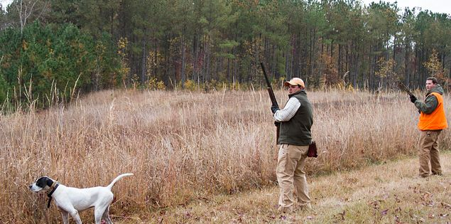 Hunters at South Carolina hunting grounds