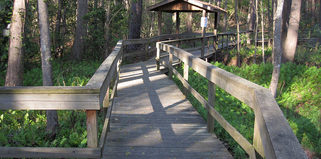 Boardwalk through Blue Heron Nature Center