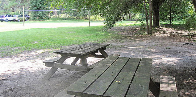 Picnic tables at South Carolina's Givhans Ferry State Park