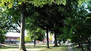 Pendleton Village Green