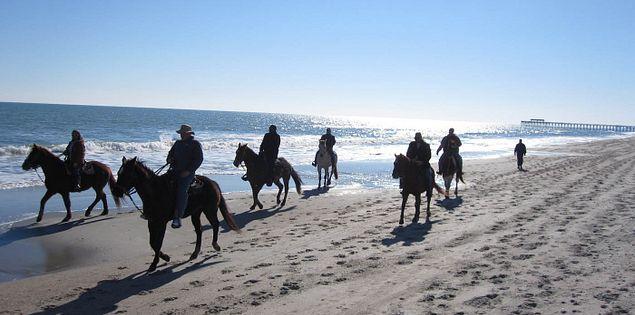 Guided horseback rides on South Carolina's Myrtle Beach