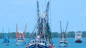 Blessing of the Fleet & Seafood Festival