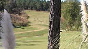 Woodfin Ridge Golf Course