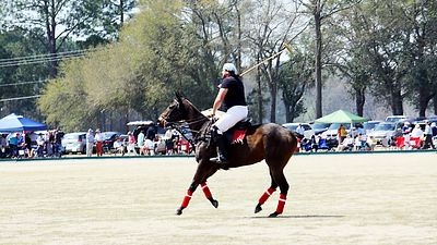 aiken polo match