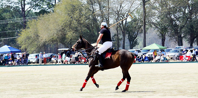 South Carolina's Pacers and Polo in Aiken