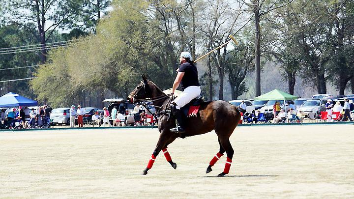 Polo in Aiken