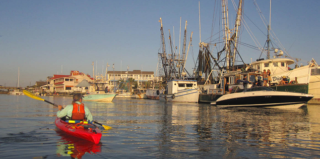 Paddling through the Lowcountry in Shem Creek
