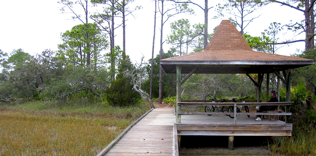 Walking through Hunting Island State Park in South Carolina's Lowcountry