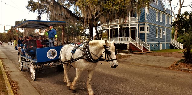 carriage tour beaufort county