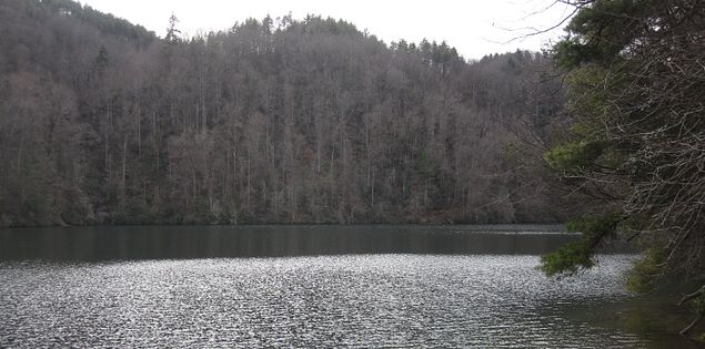 Explore Lake Jocassee on a hike through the Upstate.