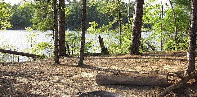 Campsite at the Keowee-Toxaway State Natural Area