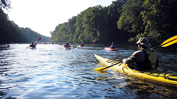 kayakers paddle down the Saluda River