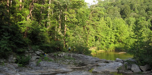 A quiet pool below Woodall Shoals in South Carolina's Upstate