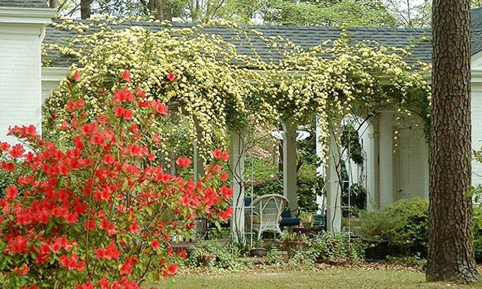 Cheraw Porch and Patio Tour