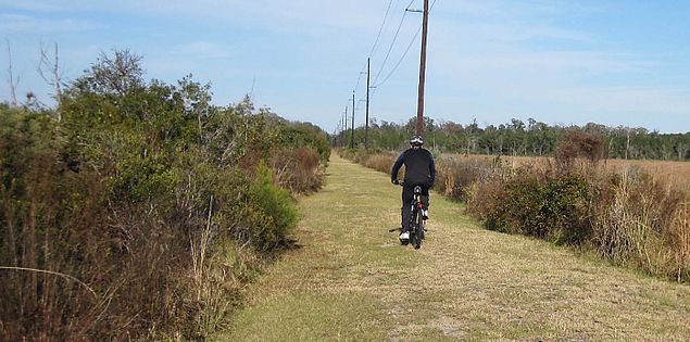 Trail near the East Coast Greenway in Lowcountry South Carolina
