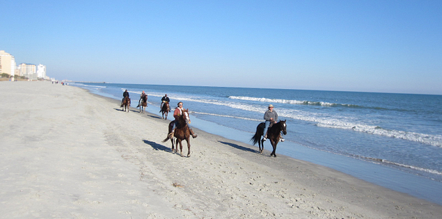 Horseback riding at Myrtle Beach