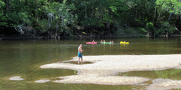 Beach on the Edisto River in Givhans Ferry