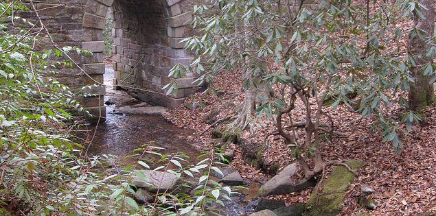 The Poinsett Bridge in Upstate South Carolina