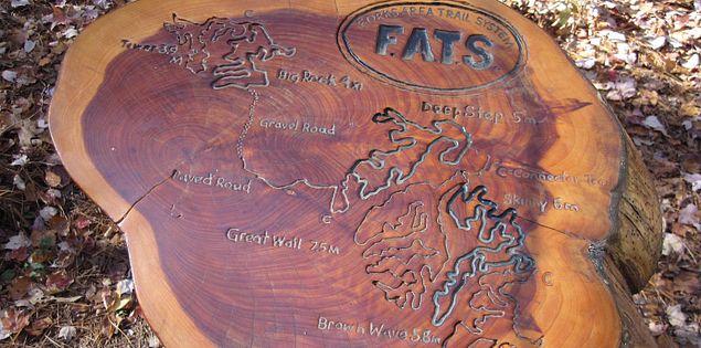 Map of FATS in South Carolina
