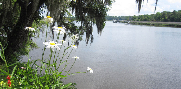 Magnolia Plantation is the oldest plantation on the scenic Ashley River