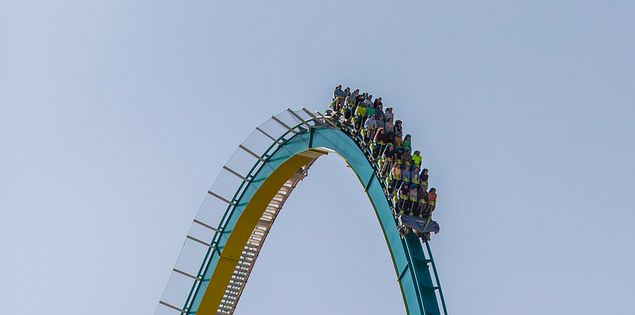 There are countless roller coasters at Carowinds that are sure to excite the entire family!