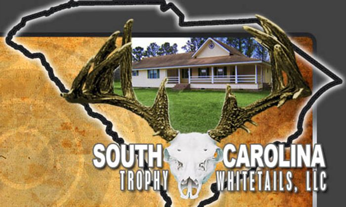 South Carolina Trophy Whitetails