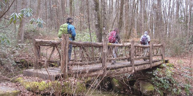 Discover handcrafted footbridges on a high to Laurel Fork Falls.