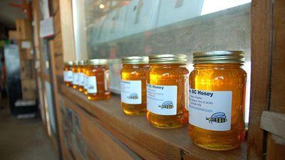 South Carolina Honey