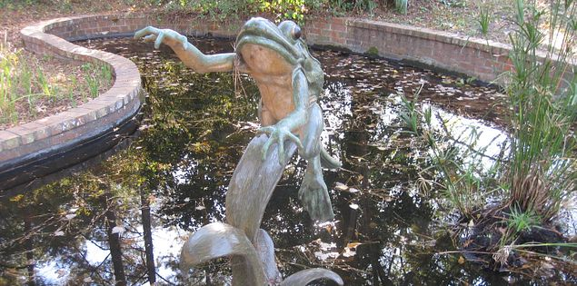 Frog Sculpture in the Public Collection in South Carolina