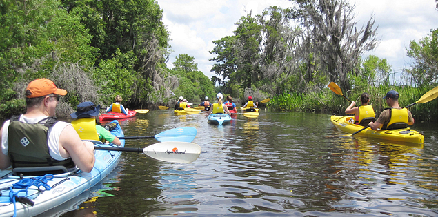 Beaufort Kayak Tours in the ACE Basin estuary