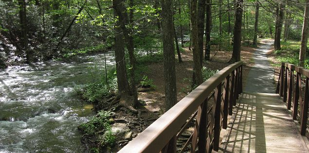 Looking for awesome hiking trails in South Carolina? Check out the Middle Saluda Passage!