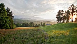 Enjoy a Weekend Golf Getaway in Greenville