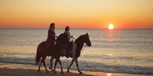 Horseback riding on the beach in Myrtle Beach