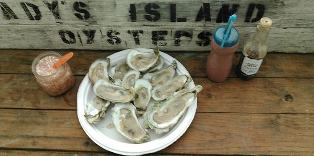 Half Shell single lady oysters