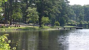 Gibson Pond