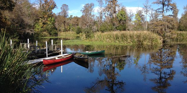 Canoe sitting in the water of Biggin Creek in South Carolina