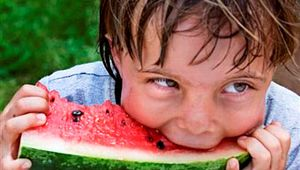 Hampton County Watermelon Festival