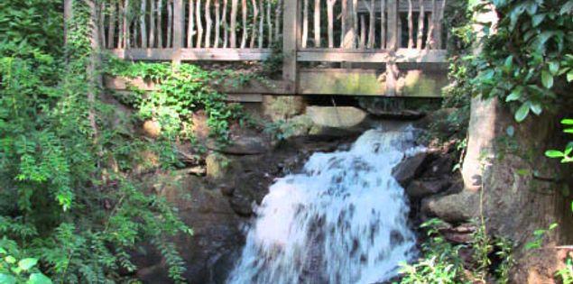 South Carolina's Hatcher Garden & Woodland Preserve
