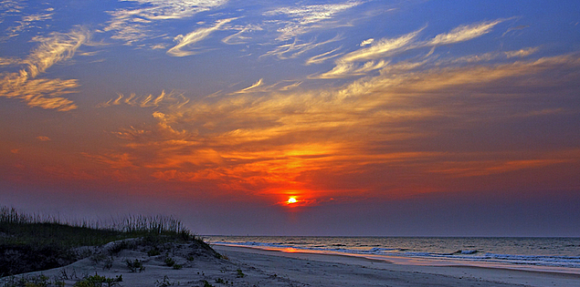 South Carolina's Huntington Beach State Park