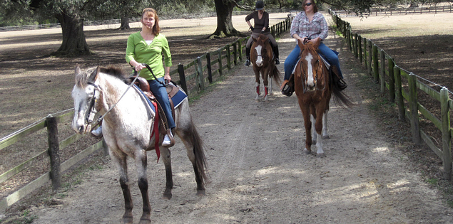 Horseback riding at Middleton Place Plantation