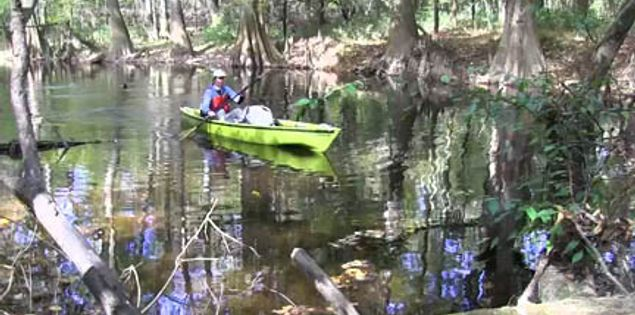 Kayaking through Cedar Creek in South Carolina's Congaree National Park