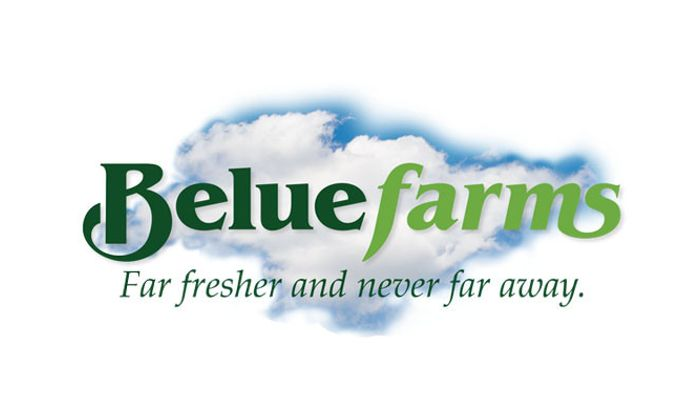 J. L. Belue Farms