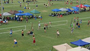 Double Dog Days Volleyball Tournament