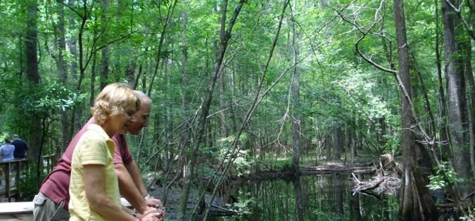 Hikers enjoying South Carolina's ACE Basin