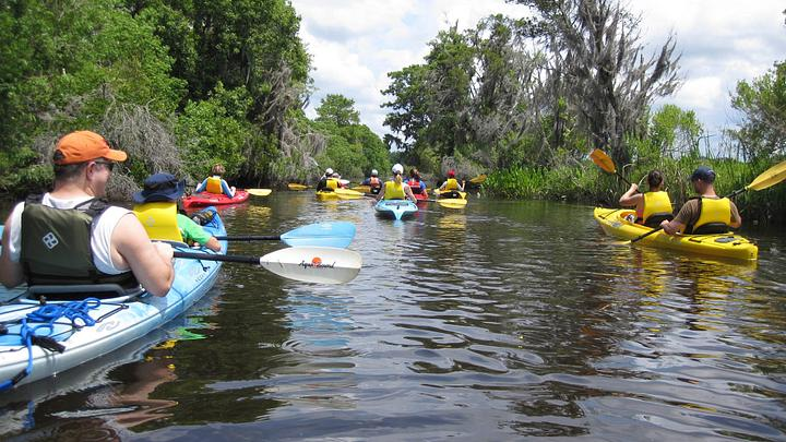 Kayaking through South Carolina's ACE Basin